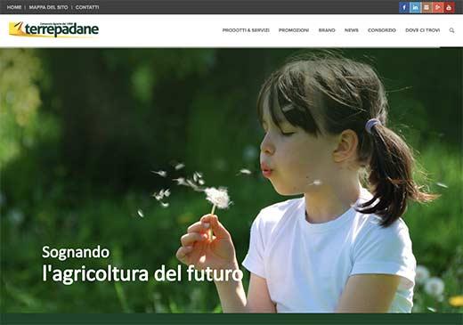Realizzazione sito web Terrepadane