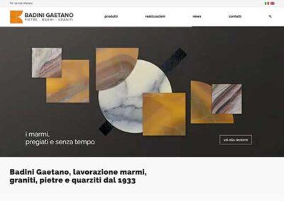 Realizzazione sito web Badini Gaetano